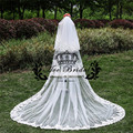 3 Meter Cathedral Wedding Veils Long Lace Edge Bridal Veil with Comb Wedding Accessories Two Layer Bride Mantilla Veil