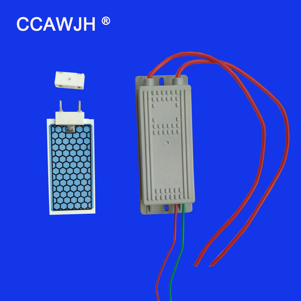 Ozone Generators Diy Various Starts Simple Ends Up With 5 Kv 2016 220v 5g Generator And Circuit Board For Air Or Water H Ceramic Plate Plug In Type Easy To Install Replace Effective