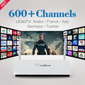 Android TV Box RK3128 Quad Core Wifi 2.4 Ghz con Canales Árabe IPTV Libre Europa Francés Alemania Streaming Media jugador