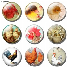 Interesting Chicken 30 MM Glass Dome Magnet for Refrigerator Decoration Magnetic Stickers Fridge Magnet Souvenir Gift for Kids