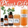 Al por mayor! Gratis Shopping100 % de Aceite Cuidado de la piel Aceite de Base de Vegetales Puros Aceites Esenciales Cuerpo Aceite de Semilla de Cártamo Australia masaje
