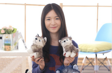 a pair of small cute plush dog toy creative mini husky dog doll gift about 15cm