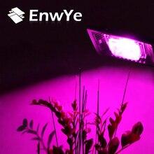 EnwYe 30W LED grow plants light Phyto Lamps waterproof IP65 full spectrum For Plants Vegs Hydroponic System Plant Light