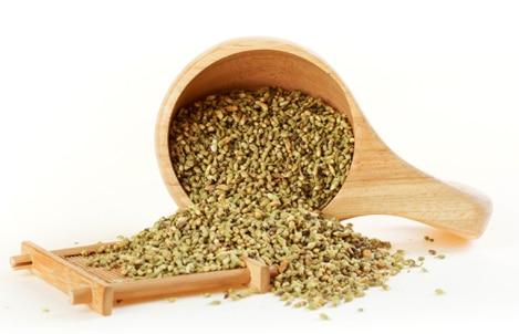 槐米茶 1