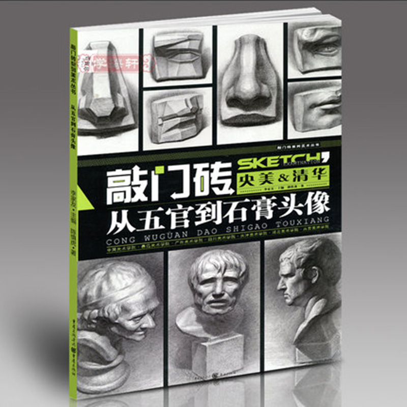 From The Five Senses To The Plaster Head Sketch Book Entry Basic Tutorial Art Books