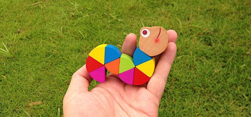 Wooden Insect Toy for Children 24