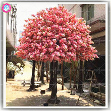 10pcs Japanese Cherry Blossom Tree Seeds Pink Sakura Super Beautiful Bonsai Flower Seeds Mixed Organically Plant for Home Garden