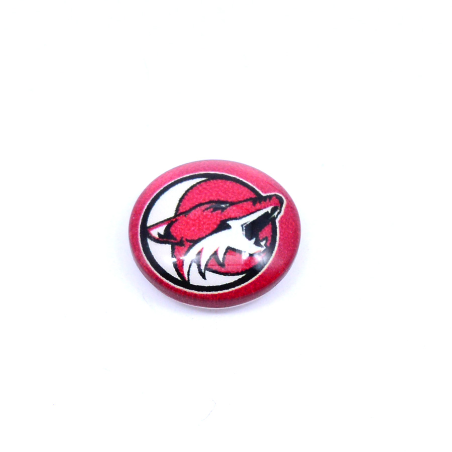 Ice Hockey Jewelry NHL Phoenix Coyotes Floating Charms for Glass Floating Charms Locket Fashion 2018