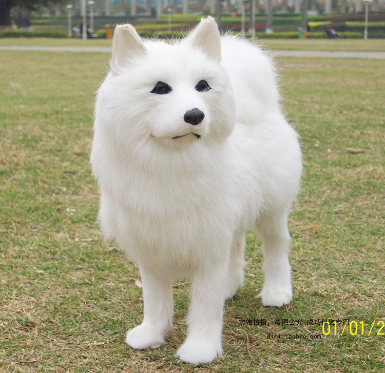 bigger simulation standing samoyeds dog toy genuine leather fabric dog doll about 25x8x24cm stuffed animal 44 cm plush standing cow toy simulation dairy cattle doll great gift w501