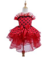 Ballet Costumes Dress for Children Leotards Women Dance Leotard Dancewear Tutu Danse Classique Adulte Prom Dresses