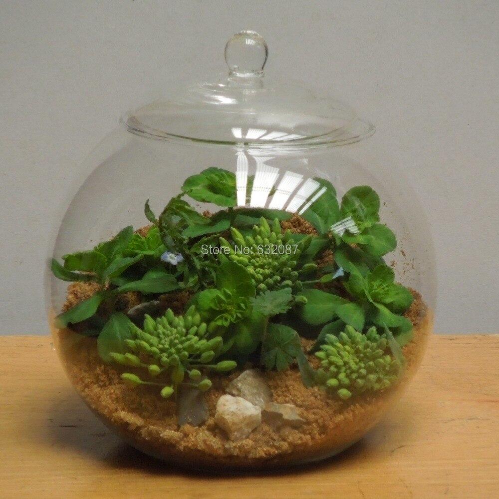 15cm 2pcs Pack Transparent Glass Material Ball Terrarium With Lid