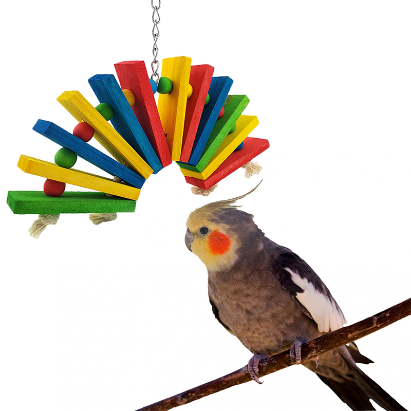 Toys For Bird : Colorful wooden toys for birds