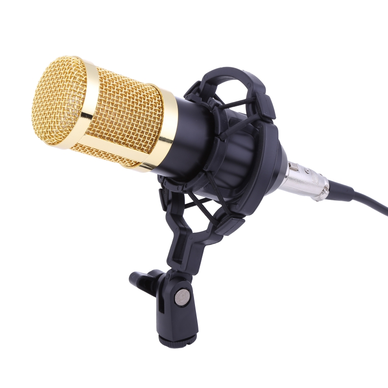 buy professional condenser microphone pro audio studio vocal recording mic. Black Bedroom Furniture Sets. Home Design Ideas