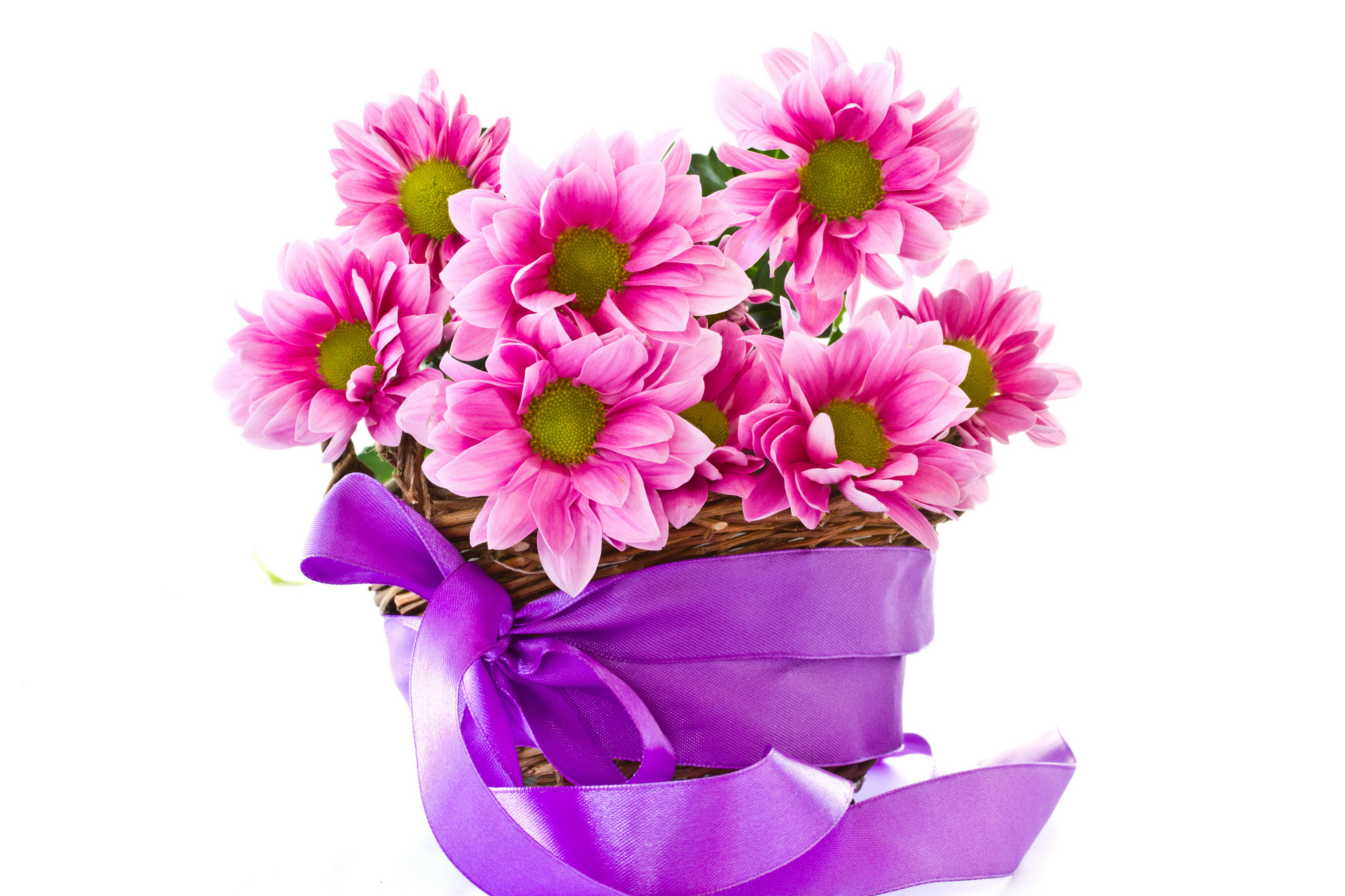 Home decoration beautiful lovely flowers flower petals ...