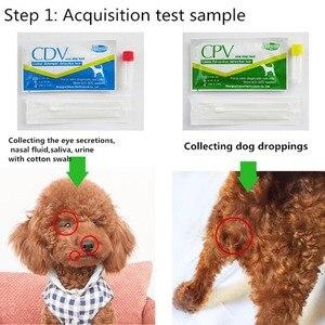 Useful Canine Dog Distemper Vi
