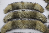 90 cm long cow horn type real raccoon fur detachable collar