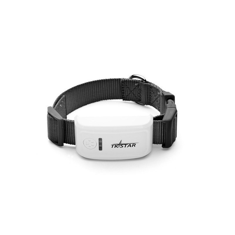 Mini traqueur GPS étanche pour animaux de compagnie + collier d'insertion pour animaux de compagnie chat vache chien moniteur GPS suivi avec plate-forme gratuite