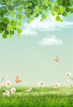 Laeacco Spring Flowers Grassland Butterfly Scenic Photography Backdrops Vinyl Backdrop Custom Backgrounds Props For Photo Studio mysterious scenic backdrop h0559 10ft x20ft hand painted backdrops photography fondo fotografico backgrounds for photo studio