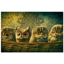 Cute owl picture Round diamond painting cross stitch 5d diy  embroidery mosaic animal Home decoration