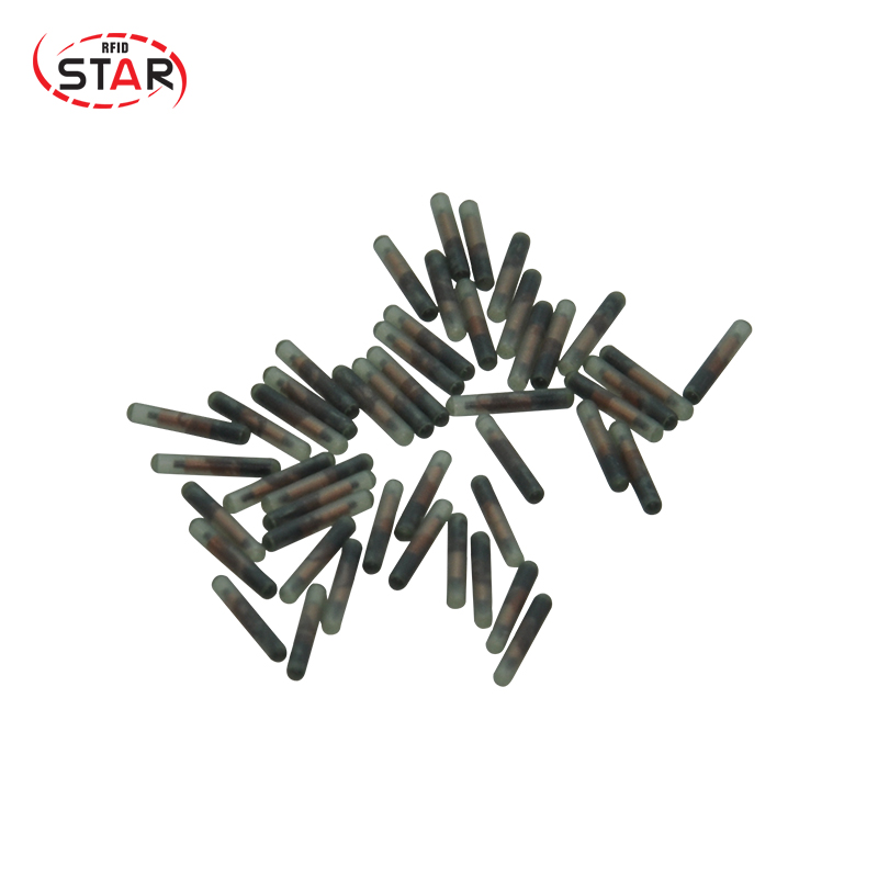 100pcs 1.25*7mm ISO FDX-B Animal Glass Microchip Implanted 134.2khz Rfid Capsule Glass Tag For Snake Fish Dog Turtle Reptiles
