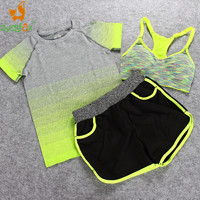 3pcs Set Women Shorts Bras T Shirts Solid Beach Skinny Shorts Quick Dry Sport Running Fitness