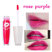 ARSYCHLL Hot Sale Rose Purple Lip Glaze Beauty Makeup Amazing Coloration Easy To Wear With Free