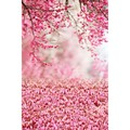 Thin vinyl photography backdrops photo studio photographic background for children wedding hot sell and wall S-982