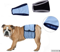 Pet Clothes Pet Physique Pants Dogs Menstrual Pants Dogs Physiological Breathable Grid Dogs Dogs Are Not