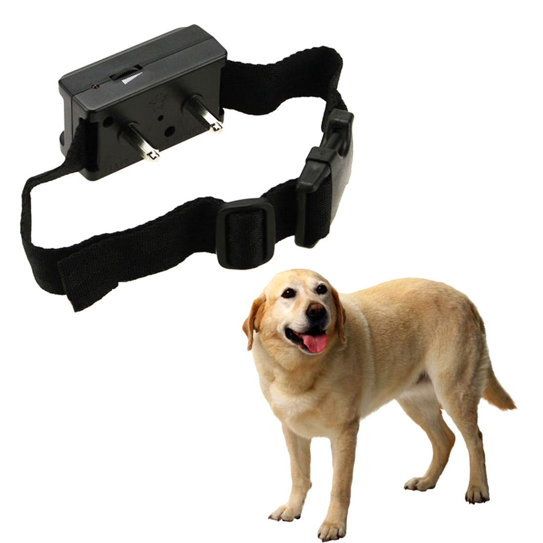 pet liner shock collar how to use