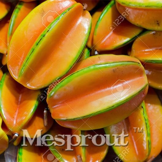 star fruit trees reviews  online shopping star fruit trees, Beautiful flower