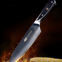 Findking G10 Handle 8 inch Damascus Chef Knife vg10 Professional Kitchen Knife 67 Layer High Quality Cooking Fruit Paring Knives