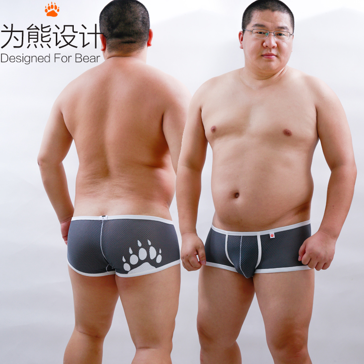 Gay asian bears