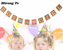 1set Decoration Bunting Banner Party Events Supplies Boy Or Girl Baby Shower Party Hanging Garland Gender Reveal Festival Party
