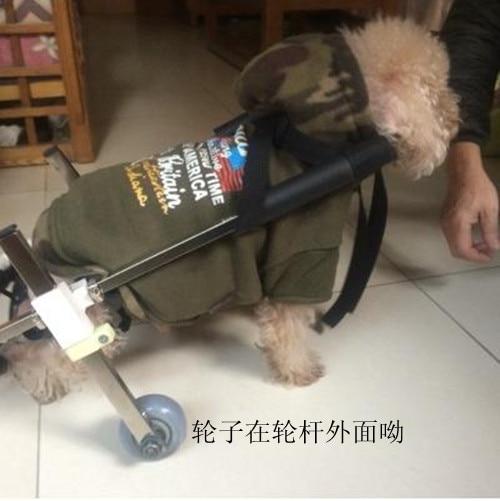 Custom cat and dog rehabilitation font b wheelchair b font customized cat and dog paralysis font