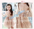 Free shipping high quality children birthday party princess dress girl wedding dress girl dress
