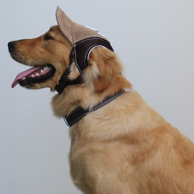 3D Breathable Mesh Pet Hat for Dog 2