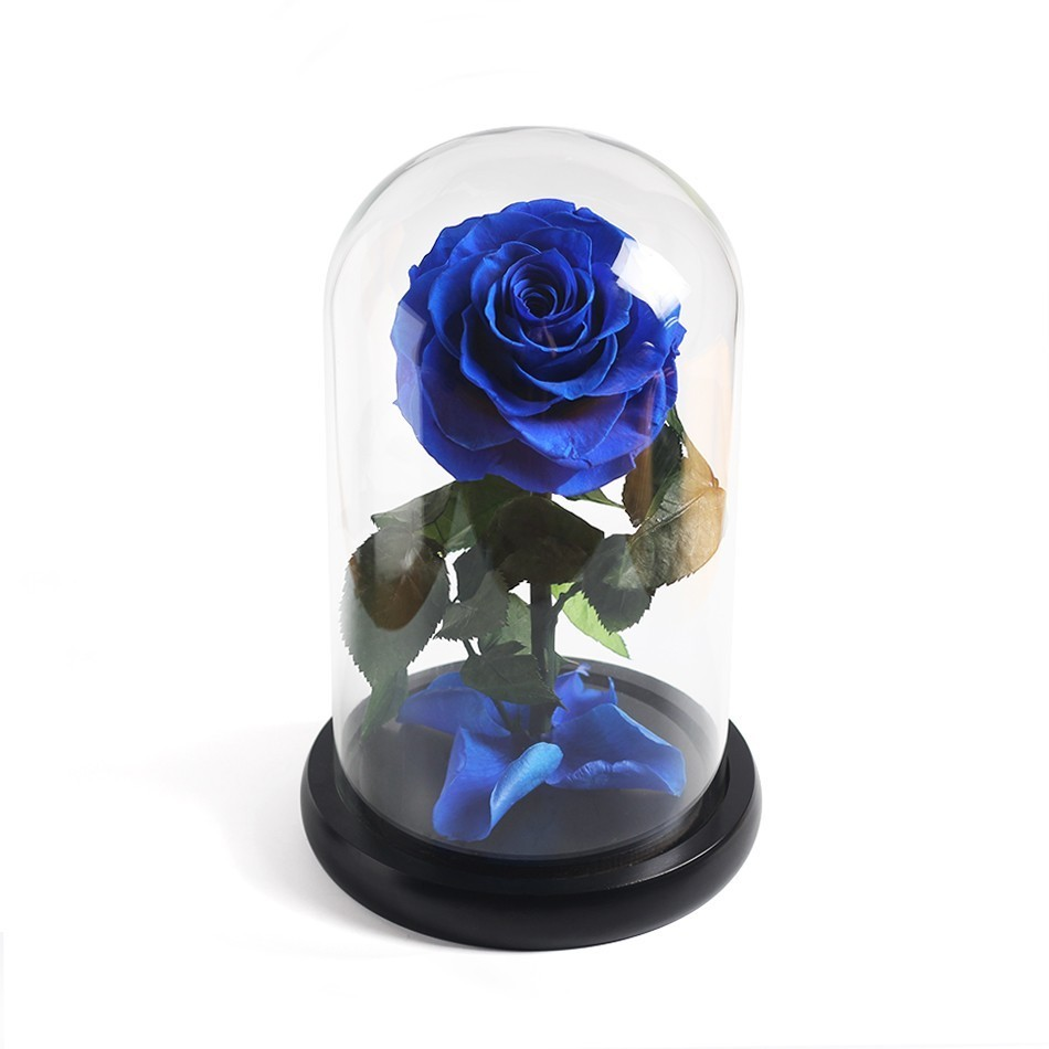 Красавица и Чудовище красная роза в стеклянном куполе на розовой гостиной спальни украшения стола подарки на день Св. Валентина подарки на день рождения - Цвет: Blue