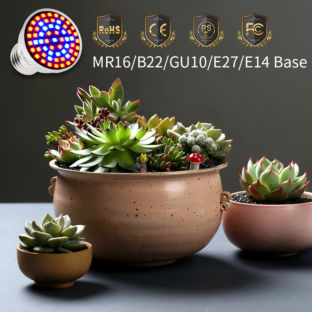Plant Growth Lamp 2835SMD E27 E14 Spotlight Bulb LED Indoor Grow Light 60 80leds 220V Flowers Plants Greenhouse Water Culture in Growing Lamps from Lights Lighting