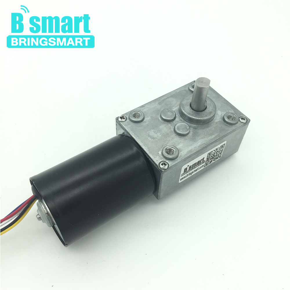 Bringsmart Brushless 12V 24V Worm Gearbox DC Motor Reversible Mini Electric Motor Self-lock Micro Turbine Worm Reducer цена