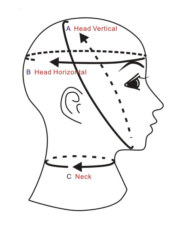 hood, neck chart