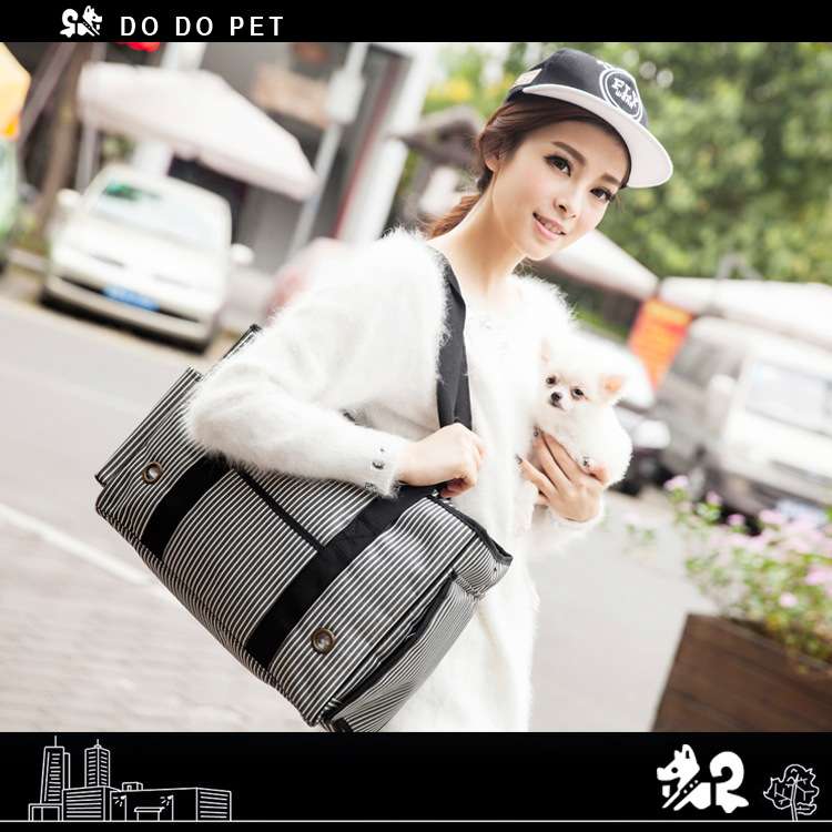 Dog Carrier  (1)