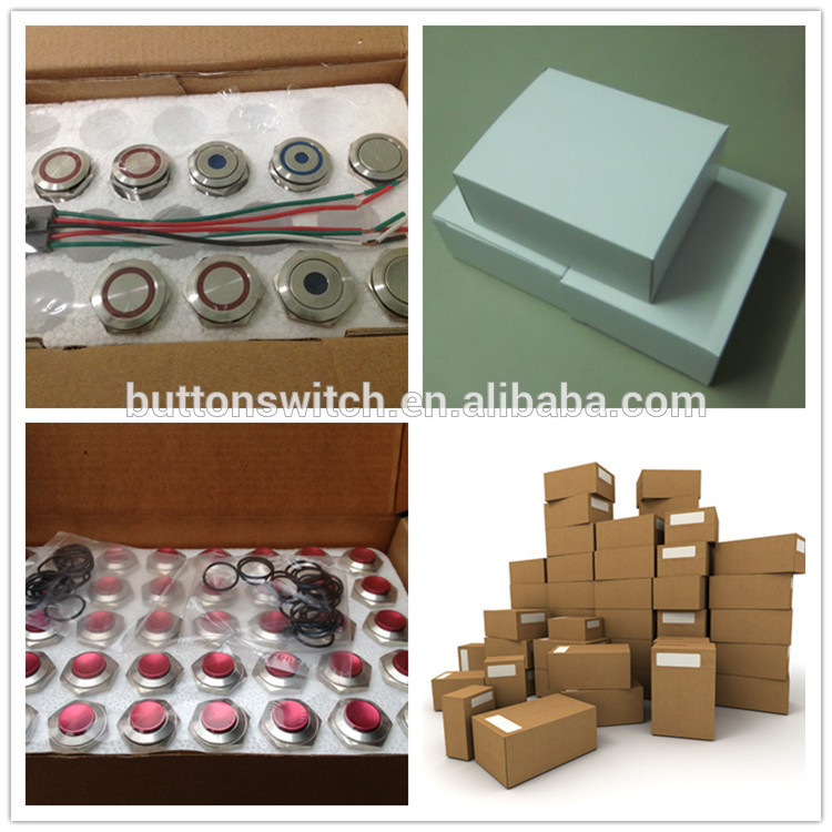 NS197 AN24-K ON-(OFF) SPST 2 Pin 20mm