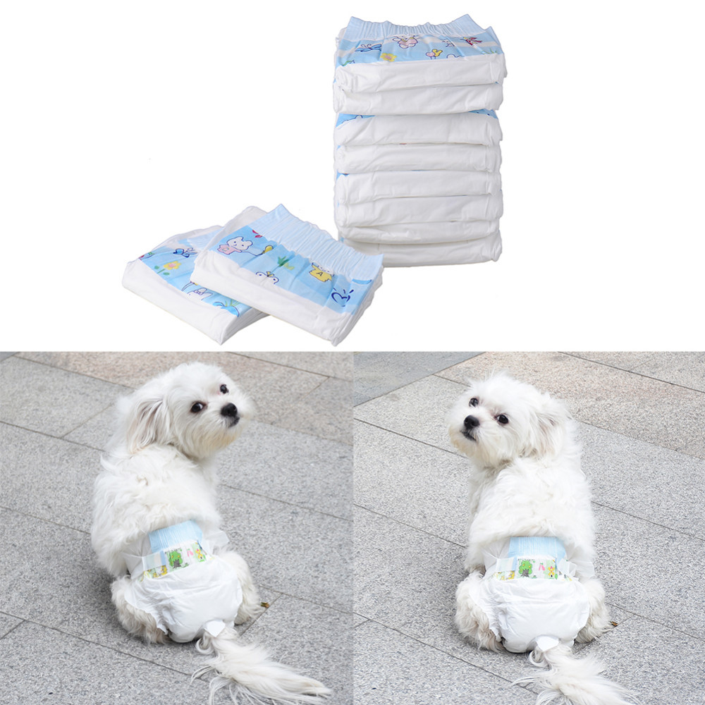 disposable female dog diapers DY579-2