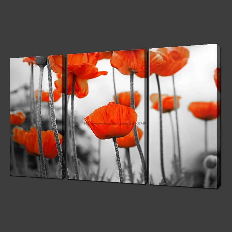Poppy field premium set of three canvas picture wall art for Set of three canvas paintings