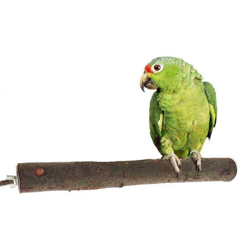 Попугай стоящий деревянный ветка маленький ПЭТ шлифовальный коготь молярные стержни прыжки колонна клетка для попугая игрушка ПЭТ нашест для птиц бар украшения