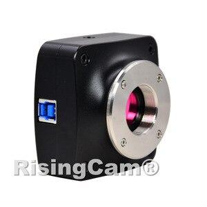 Image 3 - 20MP 60fps SONY IMX183 1inch sensore USB3.0 microscopio Della Macchina Fotografica digitale a colori