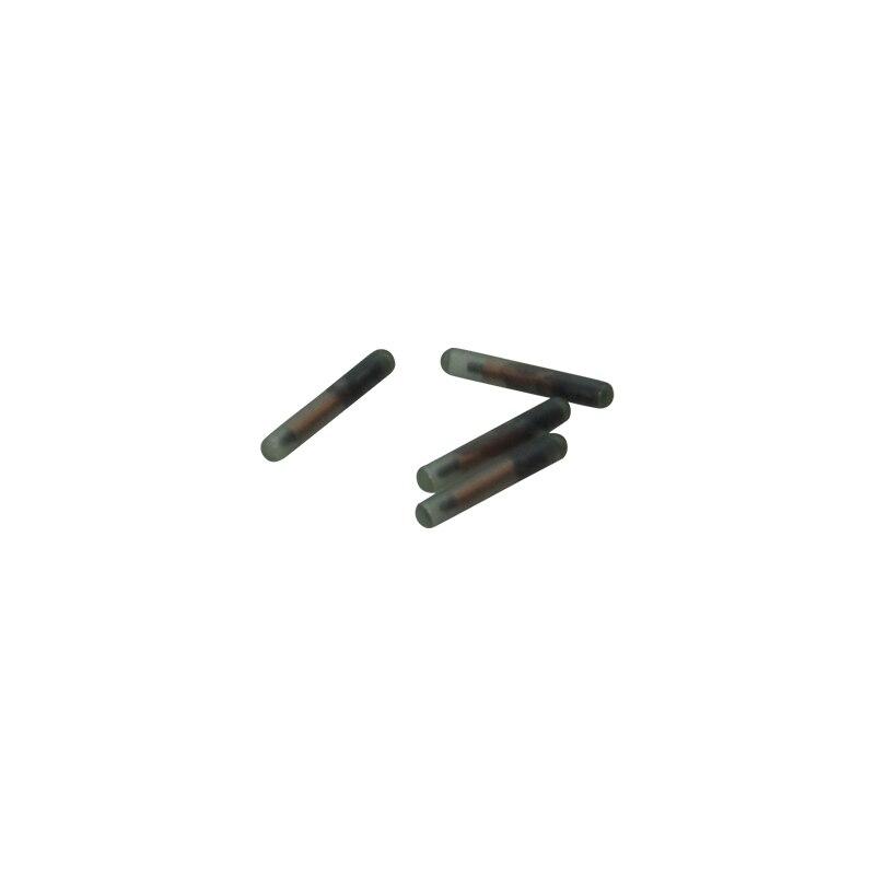 10 pcs FDX-A T5577 ISO 125 khz Bioglass Transpondeur RFID Puce Chien Puce Étiquette Animale 2*12mm