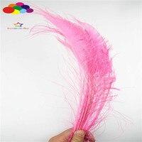 Z & Q & Y природных Красивые 100 35-40 см (14-16 дюймов) павлин Перо розовый DIY Костюмы этап Макияж ювелирные изделия
