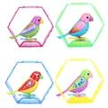 20 Canções Cantando Som Aves Animais Cantar a Solo ou em um Coro Música Inteligente Pássaro para Crianças/Crianças Brinquedo Elétrico Aleatório cor