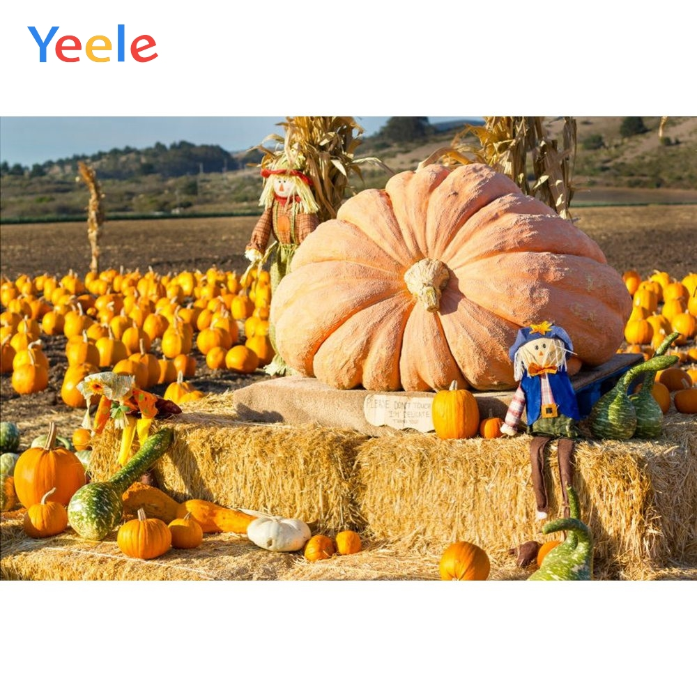 Yeele Autumn Harvest Farm Pumpkins Haystack Photography Background Happy Thanksgiving Day Photocall Backdrop For Photo Studio in Background from Consumer Electronics